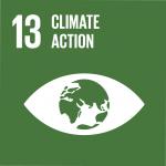 ODS 13 logo